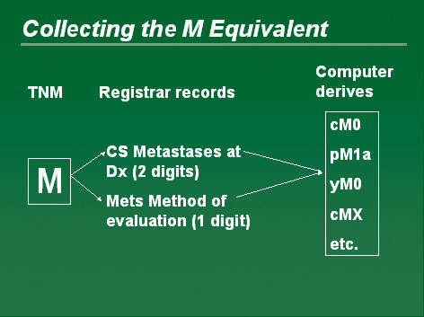 Diagram showing the collection of the M Equivalent